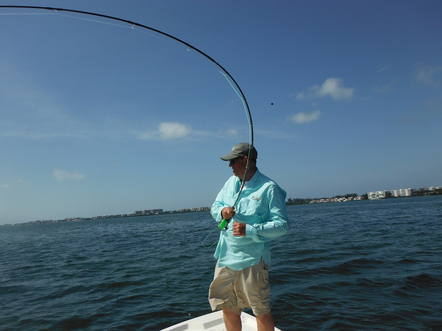Sarasota fly fishing charters