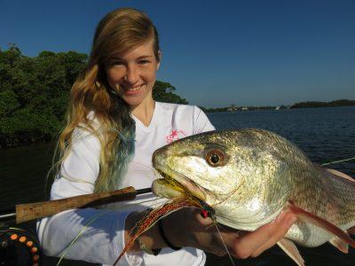 Sarasota fly fishing charters