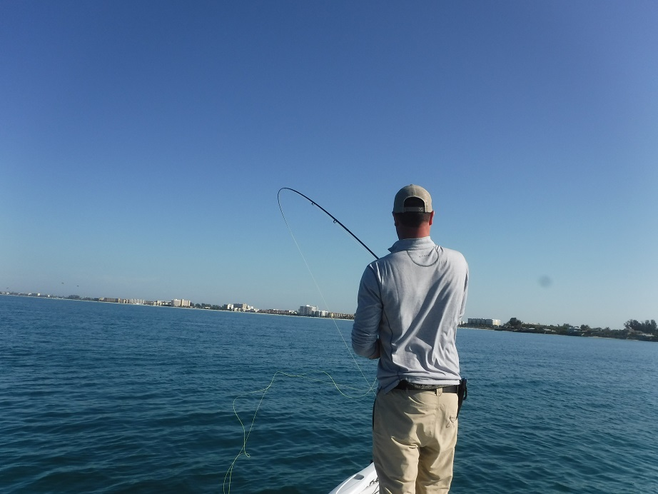 Sarasota fly fishing